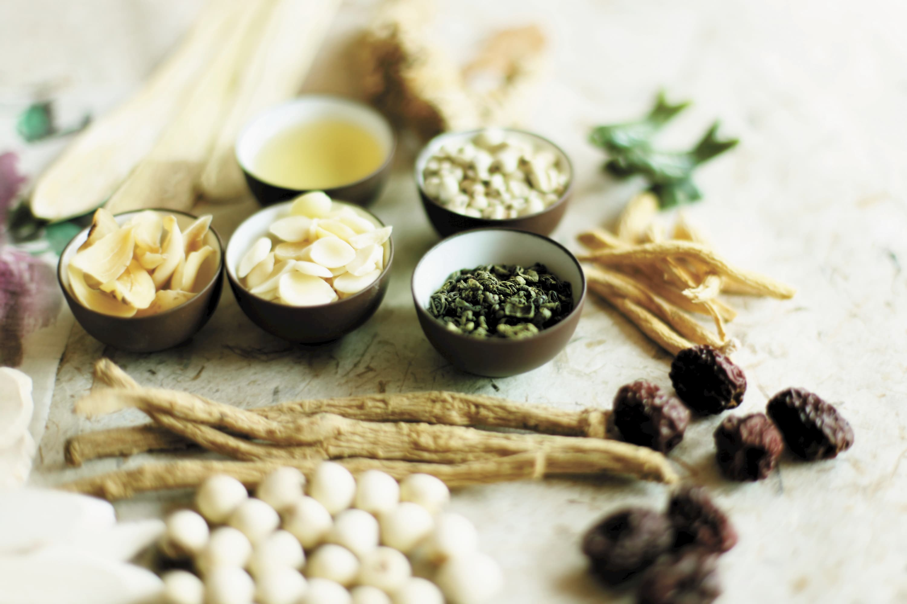 Herbal formulas for modern conditions