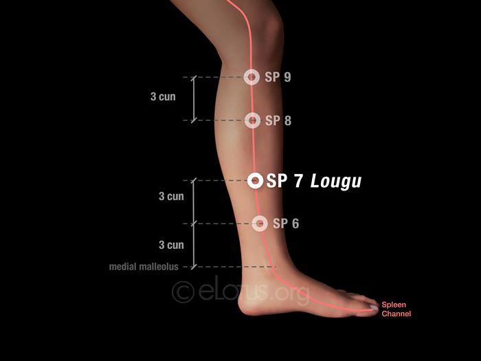 Lougu (SP 7) | Master Tung's Acupuncture | eLotus CORE