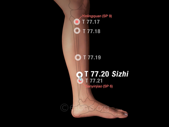 Sizhi (T 77.20)   Master Tung's Acupuncture   eLotus CORE